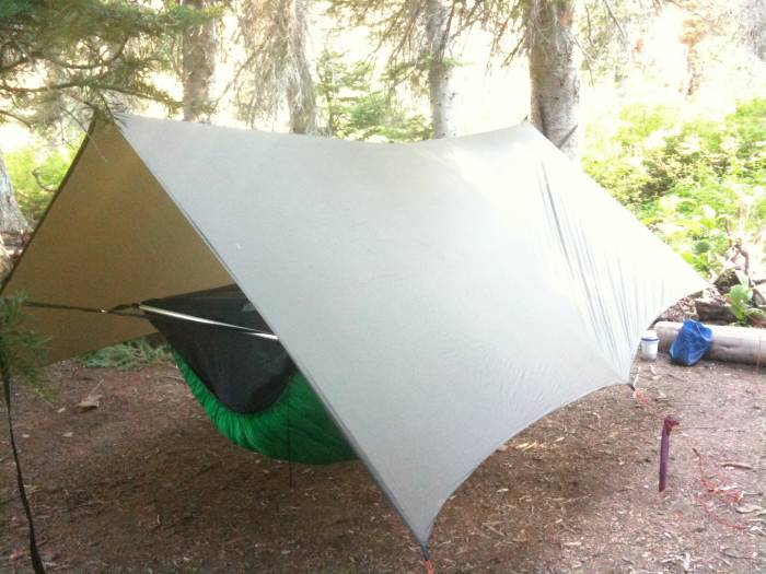 hammock all the way  sleeping on the ground is for dogs  bivy vs  hammock tent   bivy hunting shelter  rh   rokslide